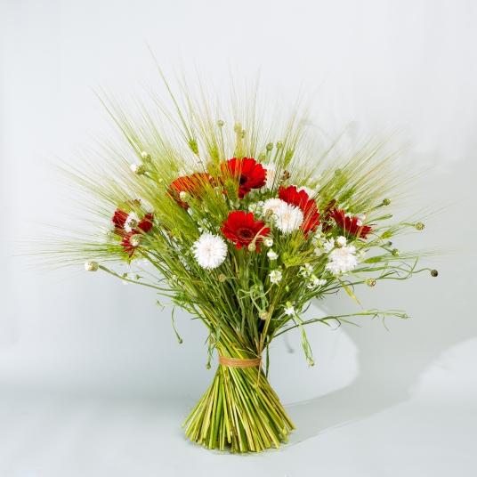 bouquet, champêtre, rouge, gerbera, blé, silène, bleuet