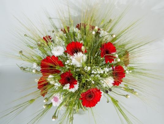 bouquet, champêtre, blé, rouge, gerbera, silène, bleuet