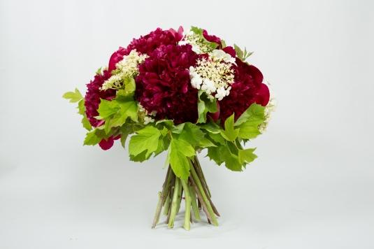 bouquet pivoine red charm