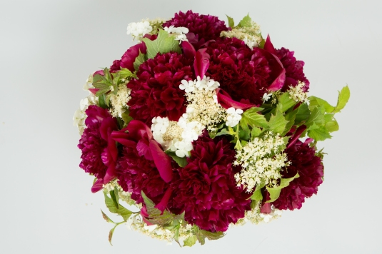 bouquet pivoine red charm