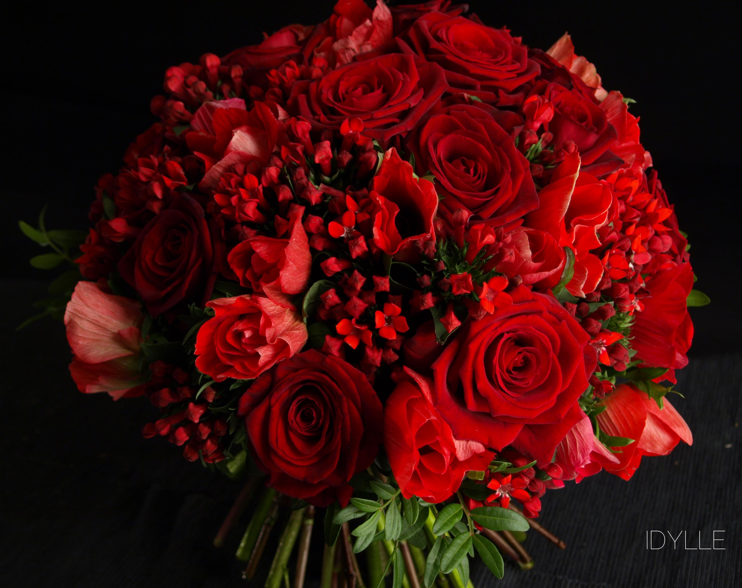 Rose rouge idylle fleuriste for Un bouquet de roses