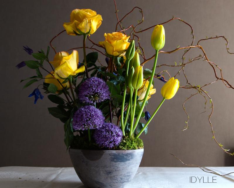 tulipe  IDYLLE  Fleuriste